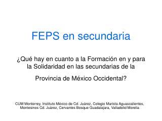 ¿Qué hay en relación a la FEPS en las secundarias de la Provincia?