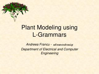 Plant Modeling using  L-Grammars