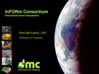 inFORm Consortium International forest management