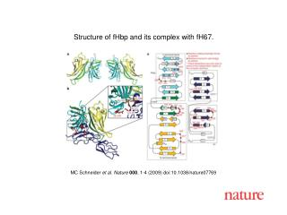MC Schneider  et al. Nature 000 , 1-4 (2009) doi:10.1038/nature07769