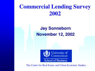 Commercial Lending Survey 2002
