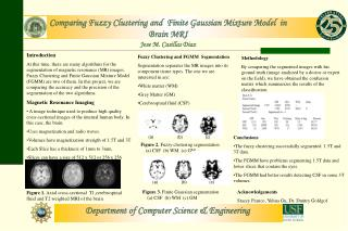 Comparing Fuzzy Clustering and  Finite Gaussian Mixture Model  in  Brain MRI Jose M. Casillas Diaz