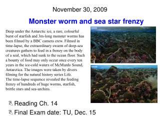 November 30, 2009
