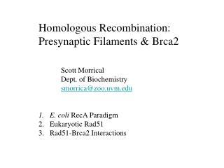 Homologous Recombination: Presynaptic Filaments & Brca2 Scott Morrical Dept. of Biochemistry