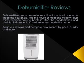 Best Dehumidifier