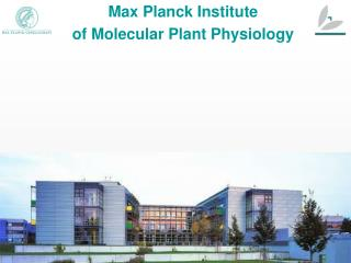 Max Planck Institute  of Molecular Plant Physiology