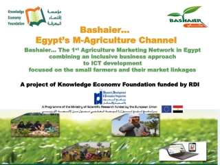 Opportunities  Challenges in the Development of the Agricultural Value Chain