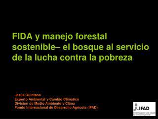 FIDA y manejo forestal sostenible– el bosque al servicio de la lucha contra la pobreza