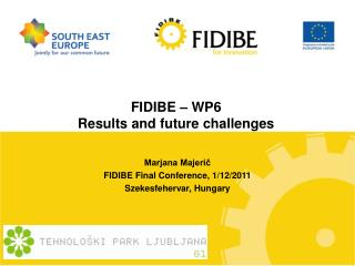FIDIBE – WP6 Results and future challenges
