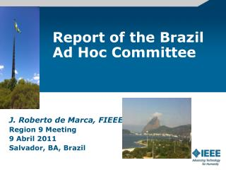 Report of the Brazil Ad Hoc Committee