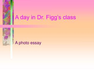 A day in Dr. Figg's class