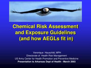 Chemical Risk Assessment and Exposure Guidelines  (and how AEGLs fit in)