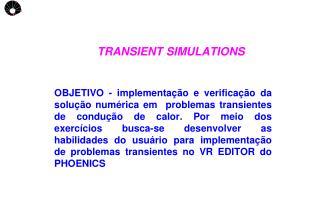TRANSIENT SIMULATIONS