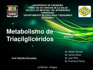 Prof:  Martha Pernalete