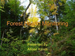 Forest Health Monitoring