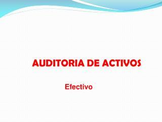 AUDITORIA DE ACTIVOS