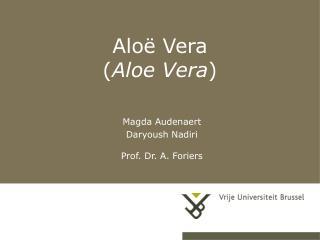 Aloë Vera  ( Aloe Vera )