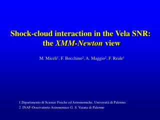Shock-cloud interaction in the Vela SNR:  the  XMM-Newton  view