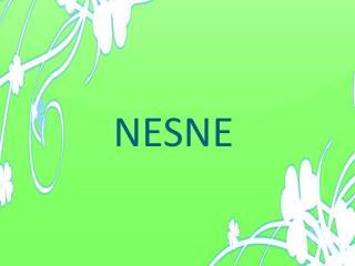 NESNE