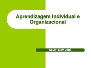 Aprendizagem Individual e Organizacional