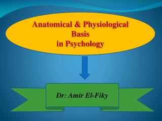 Anatomical & Physiological Basis  in Psychology