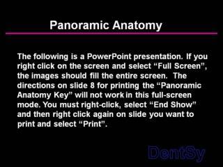 panoramic anatomy