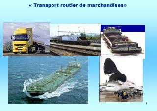 « Transport routier de marchandises»