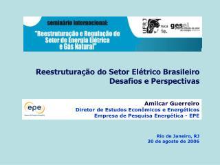 Reestrutura��o do Setor El�trico Brasileiro Desafios e Perspectivas