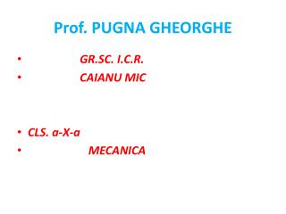 Prof. PUGNA GHEORGHE