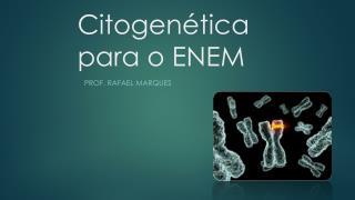 Citogenética  para o ENEM