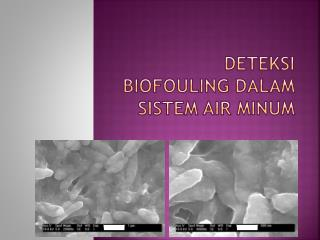 Deteksi biofouling dalam Sistem Air Minum