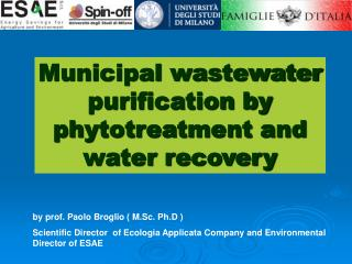Municipal wastewater purification by phytotreatment and water recovery