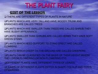 THE PLANT FAIRY