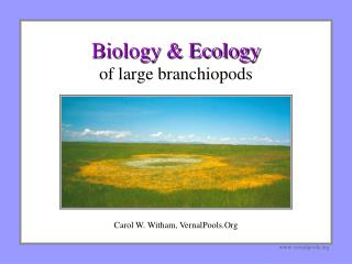 Biology & Ecology of large branchiopods