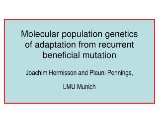 Molecular population genetics  of adaptation from recurrent beneficial mutation