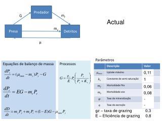 Equações de balanço de massa