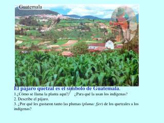El dinero de Guatemala se llama quetzal. Aquí ves un billete de cinco quetzales.