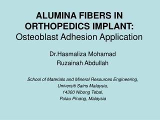 ALUMINA FIBERS IN ORTHOPEDICS IMPLANT: Osteoblast Adhesion Application