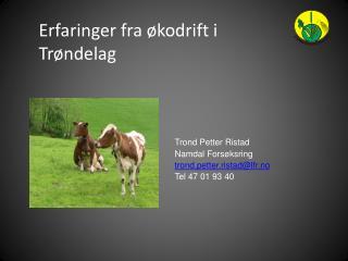Erfaringer fra økodrift i Trøndelag