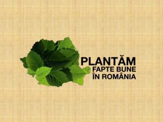 Suntem o miscare sociala.  Plantam, crestem si protejam paduri. In Romania .