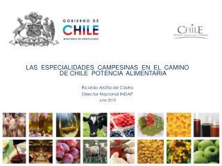 LAS  ESPECIALIDADES  CAMPESINAS  EN  EL  CAMINO  DE CHILE  POTENCIA  ALIMENTARIA