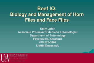 Beef IQ: Biology and Management of Horn Flies and Face Flies