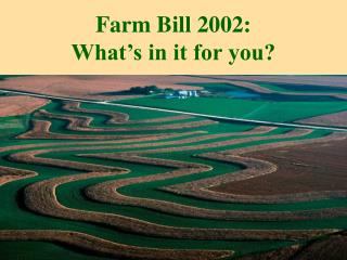 Farm Bill 2002:  What's in it for you?