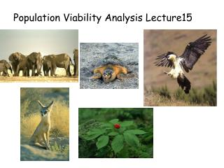 Population Viability Analysis Lecture15
