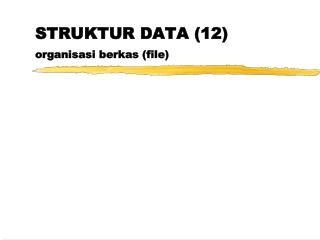 STRUKTUR DATA (12) organisasi berkas (file)