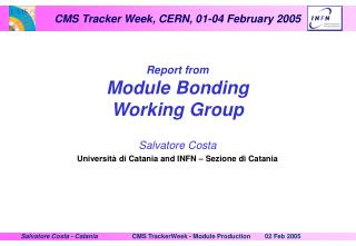 Report from Module Bonding Working Group