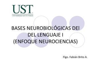 BASES NEUROBIOLÓGICAS DEl DEL LENGUAJE I (ENFOQUE NEUROCIENCIAS)