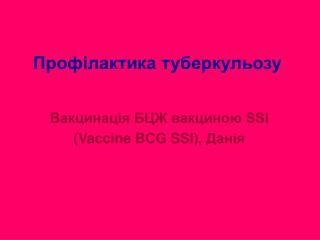SSI Vaccine BCG SSI,