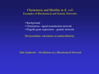 Chemotaxis and Motility in  E. coli Examples of Biochemical and Genetic Networks