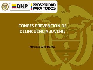 CONPES PREVENCION DE DELINCUENCIA JUVENIL Manizales– JULIO DE 2013